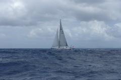 british-virgin-islands-tortola-nanny-cay-14