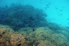französisch-polynesien-bora-bora-matira-beach-07