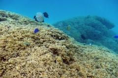französisch-polynesien-bora-bora-matira-beach-13