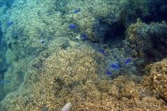 französisch-polynesien-bora-bora-matira-beach-15