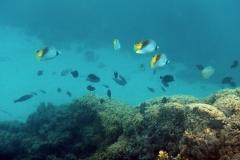 französisch-polynesien-bora-bora-matira-beach-17