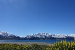neuseeland-fox-glacier-01