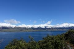 neuseeland-fox-glacier-04