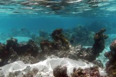 französisch-polynesien-huahine-sofitel-beach-12