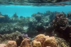 französisch-polynesien-huahine-sofitel-beach-18
