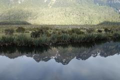 neuseeland-milford-sound-06