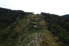 neuseeland-milford-sound-19
