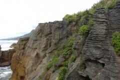 neuseeland-pancake-rocks-12