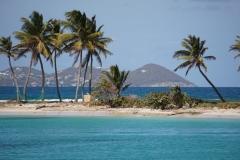 sailing-caribbean-salt-whistle-bay-01