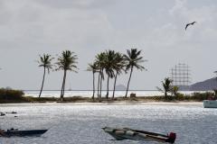 sailing-caribbean-salt-whistle-bay-09