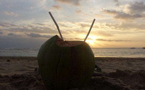 Wer hat die Kokosnuss geklaut...