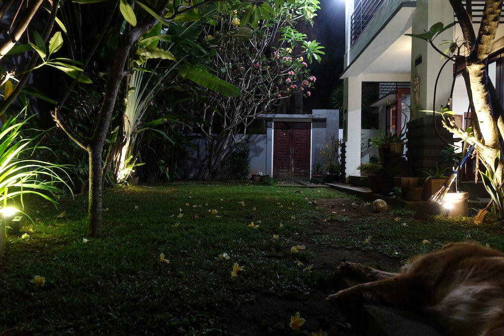 Blick aus unserer Bungalow-Tür in unserer Unterkunft in Senggigi auf Lombok. Mit Hund.