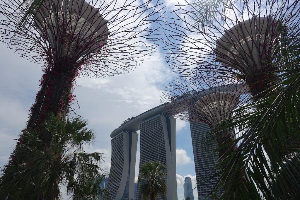 Gardens by the bay mit dem Marina Bay Sands Hotel im Hintergrund