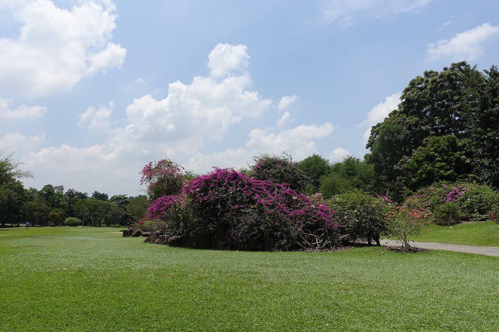 Botanical Garden, ein weiterer Garten mit dem Singapur seinem Ruf als Garden City natürlich gerecht wird.