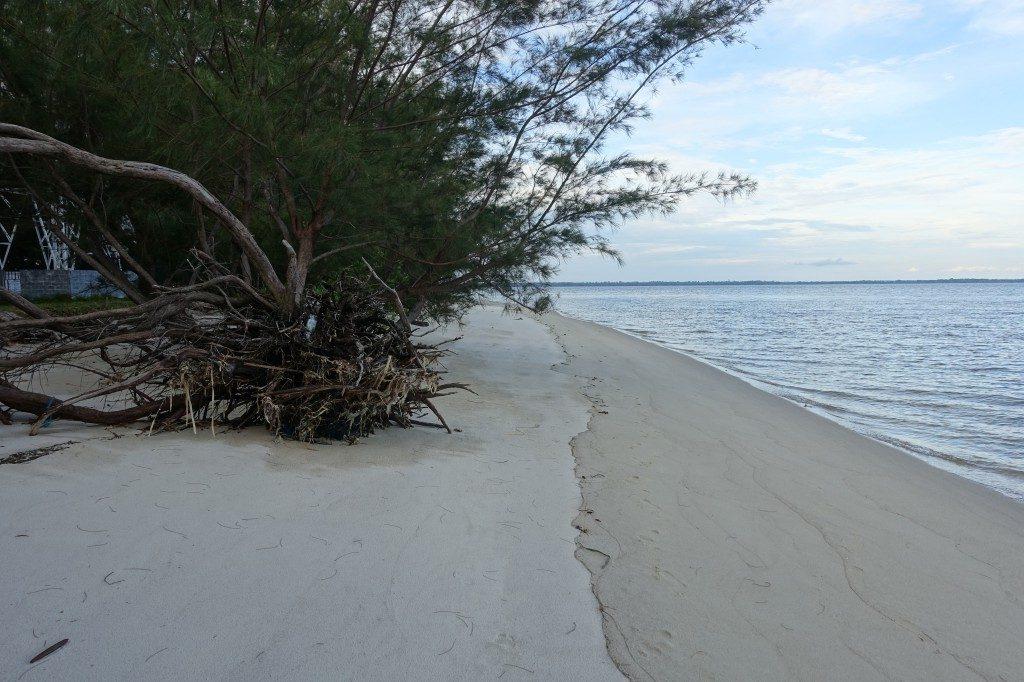 Der Strand an der Flussmündung von Kumai