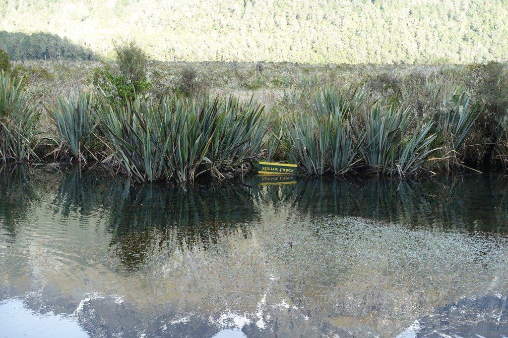 Mirror-Lakes auf dem Weg zum Milford Sound