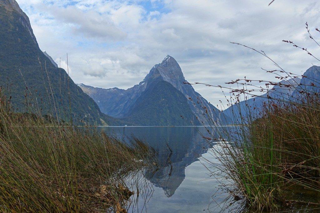 Morgendliche Ruhe am Milford Sound